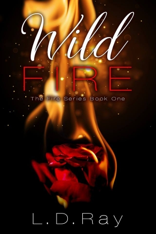 Wild Fire by LD Ray